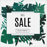 Sale Tropic banner. Design template. Tropical leaves frame with blank space paper. Advertisement, flyer, background. Sale Tropic banner. Design template Stock Photography