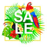 Sale tropical composition Royalty Free Stock Photos