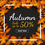 Sale up to 50 percent. Banner promotion autumn season on dark background with falling leaves, shop button and text. Autumn season. And shopping online theme for Vector Illustration
