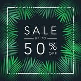 Sale up to 50 percent season discounts banner with palm leaves. Shop market poster design. Vector Stock Image