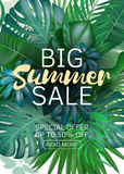 Sale vertical banner, poster with palm leaves, jungle leaf and handwriting lettering. Floral tropical summer background. Vector illustration EPS10 Royalty Free Stock Photography