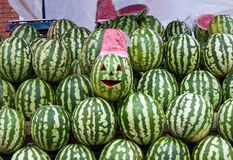 Sale of water-melons Stock Images
