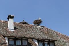 Salem, Alemania, año 2013 imagenes de archivo