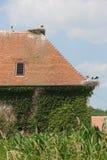 Salem, Alemania, año 2013 foto de archivo libre de regalías