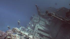Salem Express ruiniert unter blauem Wasser im Roten Meer in Ägypten stock footage