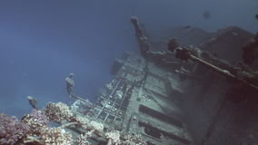 Salem Express shipwrecks under blue water in the Red Sea in Egypt. Extreme tourism on the ocean floor in the world of coral reefs, fish, sharks. Researchers of stock footage