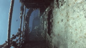 Salem Express shipwrecks underwater in the Red Sea in Egypt. stock footage
