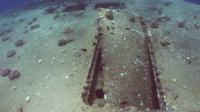 Salem Express shipwrecks underwater on seabed n Egypt. Extreme tourism on ocean floor in world of coral reefs, fish, sharks. Researchers of wildlife blue abyss stock footage