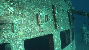Salem Express underwater in the Red Sea in Egypt. Extreme tourism on the ocean floor in the world of coral reefs, fish, sharks. Researchers of wildlife blue stock footage