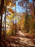 Salem jezioro Zdjęcie Stock
