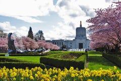 Wiosna w mieście Zdjęcia Royalty Free