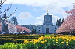 Salem, Oregon, nella stagione di fioritura Fotografia Stock