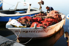 Salento fisherman Royalty Free Stock Photography