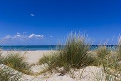 Salento, sand dunes. Salento Lecce: the sea, the beach and sand dunes Royalty Free Stock Photos