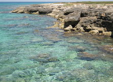 Salento. A view of the coast of Salento (Italy Royalty Free Stock Photo