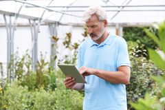 Sales Assistant In Garden Center With Digital Tablet. Sales Assistant In Garden Center Using Digital Tablet Royalty Free Stock Photo