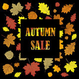 Sales banner with autumn leaves. Leafs in season vector sale design panel.   Stock Photography