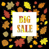 Sales banner with autumn leaves.   Stock Photo