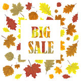 Sales banner with autumn leaves.   Stock Image