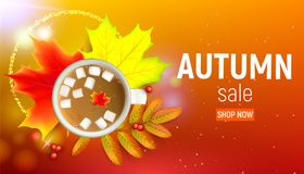 Sales banner with autumn maple leaf and rowan branches with ashberry and cup of coffee with marshmallow on a orange. Sales banner with maple autumn leaves and Royalty Free Stock Photos