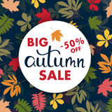 Sales banner with multicolor autumn leaves. Vector Royalty Free Stock Photos