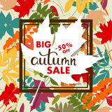 Sales banner with multicolor autumn leaves. Vector Royalty Free Stock Photography