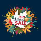 Sales banner with multicolor autumn leaves. Vector Stock Photos