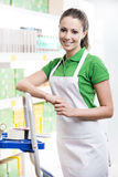 Sales clerk at work on a ladder Stock Photography