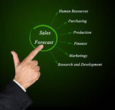 Sales Forecast Royalty Free Stock Photos