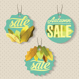 Sales labels. Set of badges for using in different spheres Royalty Free Stock Image