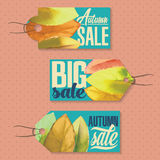 Sales labels. Set of badges for using in different spheres Stock Image