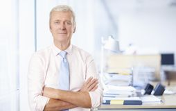 Sales manager in the office Royalty Free Stock Image