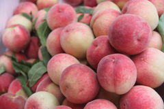 Sales the peach Stock Photo