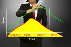 Sales and profits during the product life cycle diagram. Business woman drawing sales and profits during the product life cycle diagram Stock Photos