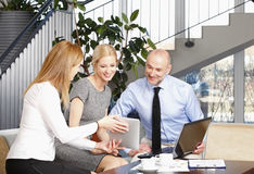 Sales team at work Royalty Free Stock Photos