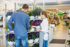 Salesgirl Assisting Customer In Buying Plants At Royalty Free Stock Photo