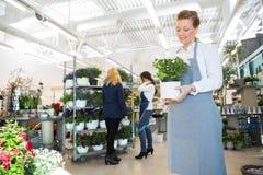 Salesgirl Holding Flower Pot In Florist Shop Royalty Free Stock Image