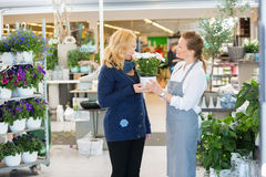 Salesgirl Looking At Customer Smelling Flowers In Royalty Free Stock Photography