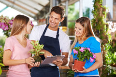 Salesman and customers in nursery shop Stock Image