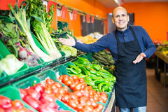 Salesman posing near different vegetables. Elderly salesman posing near display with different vegetables  in supermarket Royalty Free Stock Photos