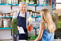 Salesman recommending fertilizer in nursery Royalty Free Stock Images