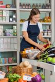 Saleswoman Working In Supermarket Stock Image