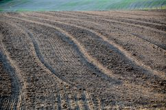 Saleté labourée Terres cultivables Photographie stock