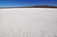 Salez le carter dans le désert d'atacama au Chili Image stock