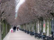 Salford码头散步,曼彻斯特 免版税库存照片