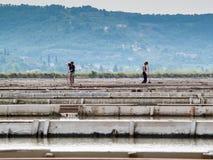 Salgue bandejas do sicciole, Pirano, Eslovênia, Europa Imagem de Stock Royalty Free
