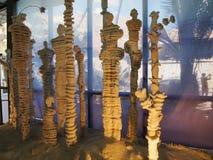 Salgue esculturas em uma fábrica cosmética no mar de Israel Dead Imagens de Stock