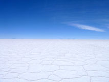 Salgue planos Bolívia Foto de Stock Royalty Free