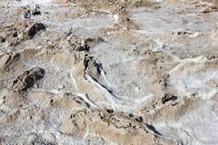 Salgue planos na bacia de Badwater, parque nacional de Vale da Morte, EUA Imagem de Stock