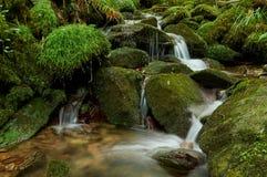 Salgueira flod som faller mellan stenar royaltyfria foton